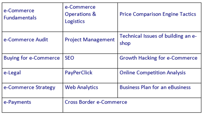 e-Commerce Project Manager - ηλεκτρονικό εμπόριο
